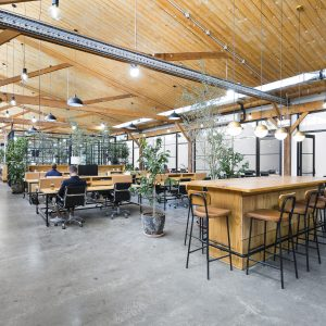 Concept Commercial Interiors Melbourne Office Fitouts The Hive